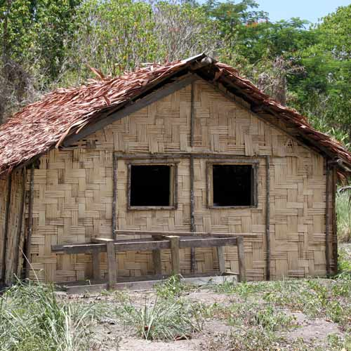 Dwellings answer: WOVEN HUT