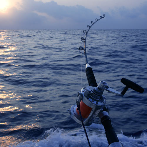 Experiences answer: DEEP SEA FISHING
