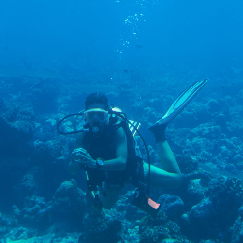 Experiences answer: SCUBA DIVE