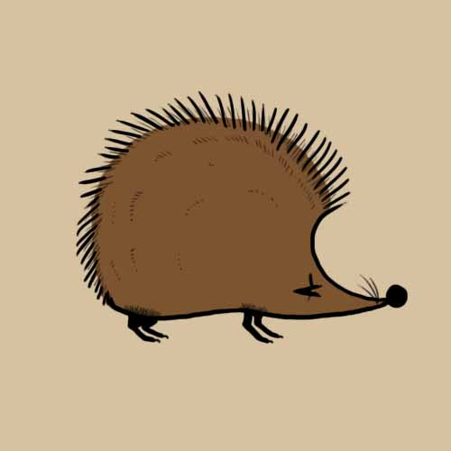Fairy Tales answer: HEDGEHOG