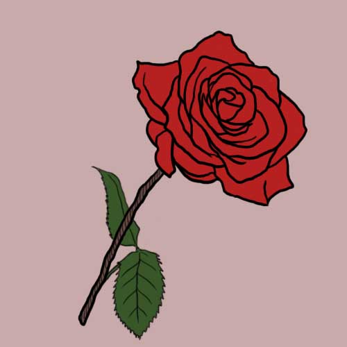 Fairy Tales answer: RED ROSE