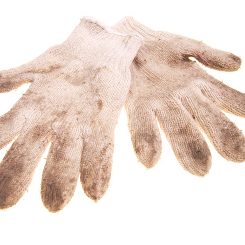 Gardening answer: GLOVES