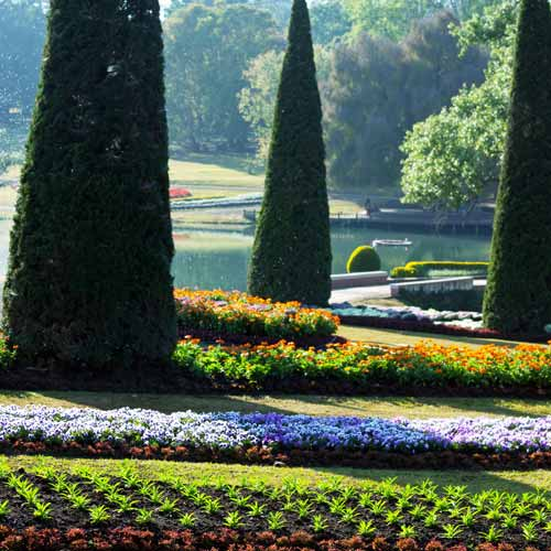 Gardening answer: LANDSCAPED