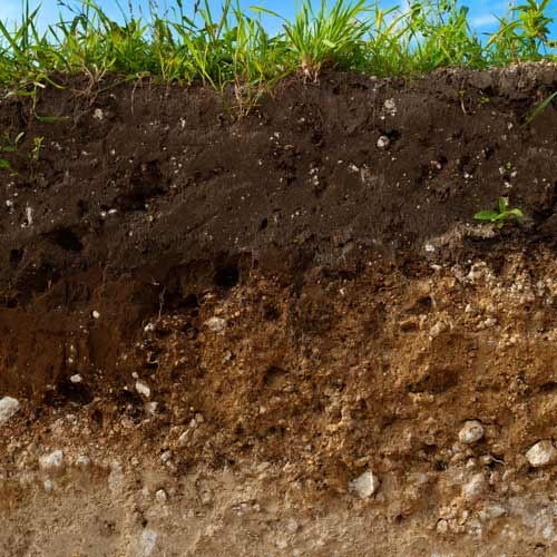 Gardening answer: LOAM