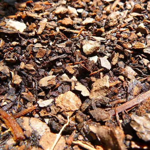 Gardening answer: MULCH