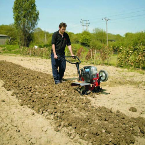 Gardening answer: ROTAVATOR