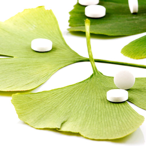 G is for... answer: GINKGO BILOBA