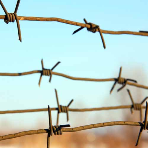 Halloween answer: BARBED WIRE