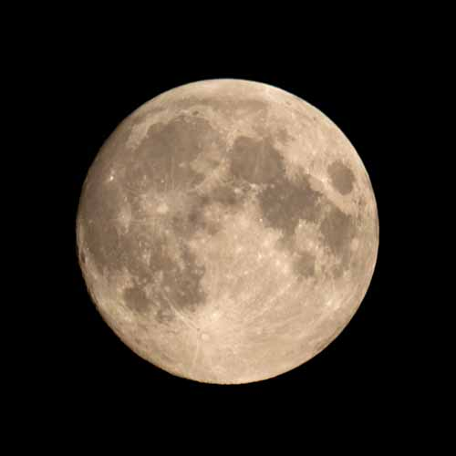 Halloween answer: FULL MOON