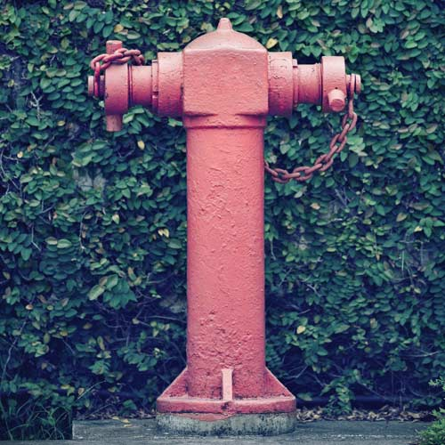 H is for... answer: HYDRANT
