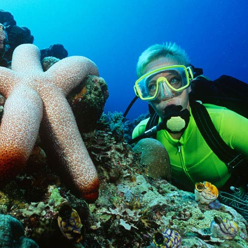 Holidays answer: SCUBA DIVING