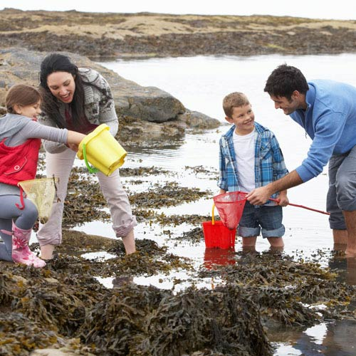 Holidays answer: ROCK POOLS