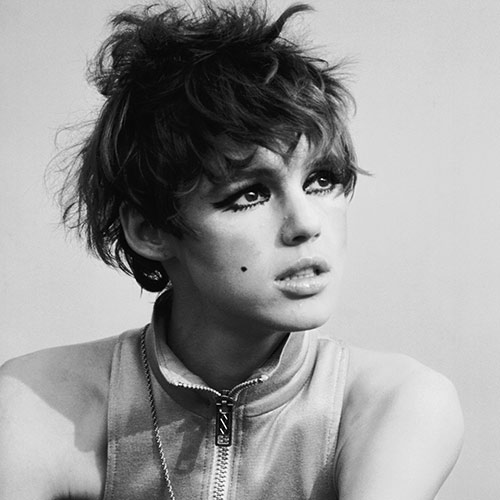 Icons answer: EDIE SEDGWICK