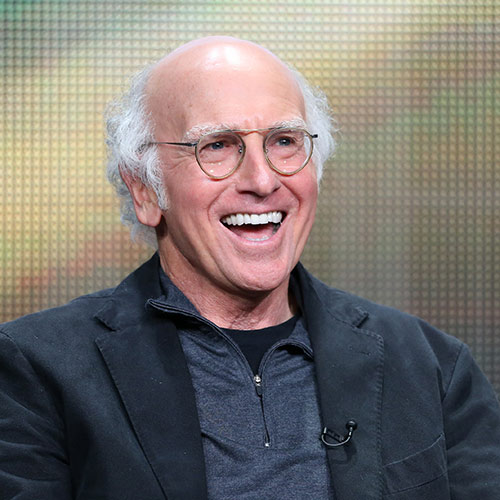 Icons answer: LARRY DAVID