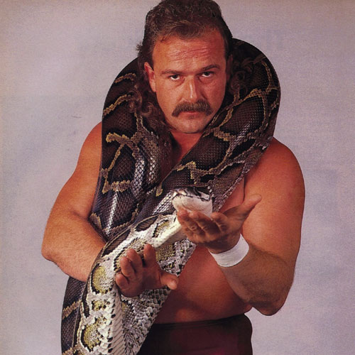 I ♥ 1980s answer: JAKE THE SNAKE