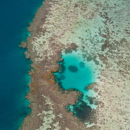 I ♥ Australia answer: BARRIER REEF