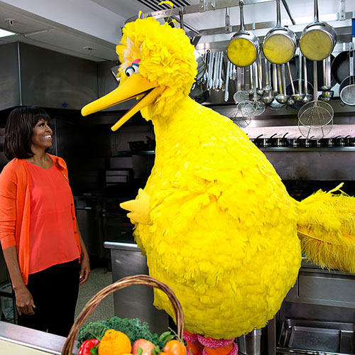 I Love USA answer: BIG BIRD