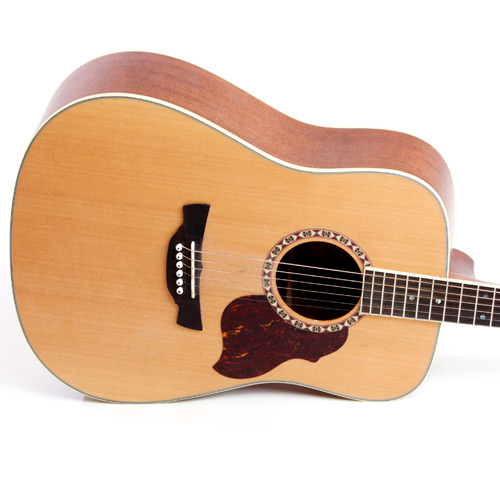 Instruments answer: ACOUSTIC GUITAR