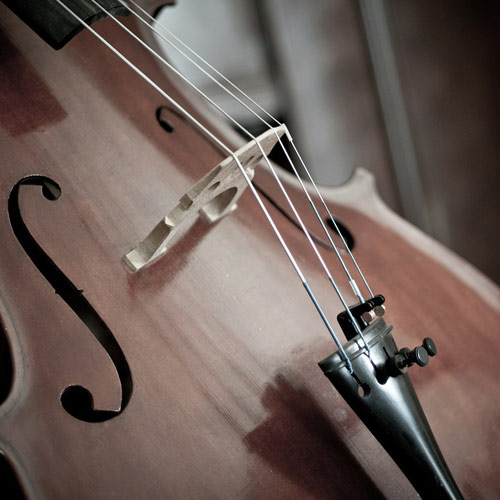 Instruments answer: CELLO