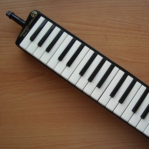 Instruments answer: MELODICA