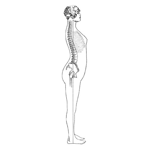 L is for... answer: LORDOSIS