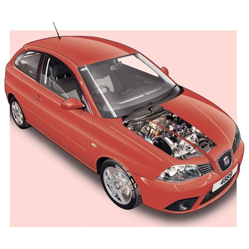 Modern Cars answer: SEAT IBIZA MK3