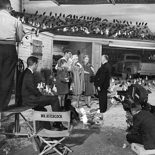 Movie Sets answer: THE BIRDS