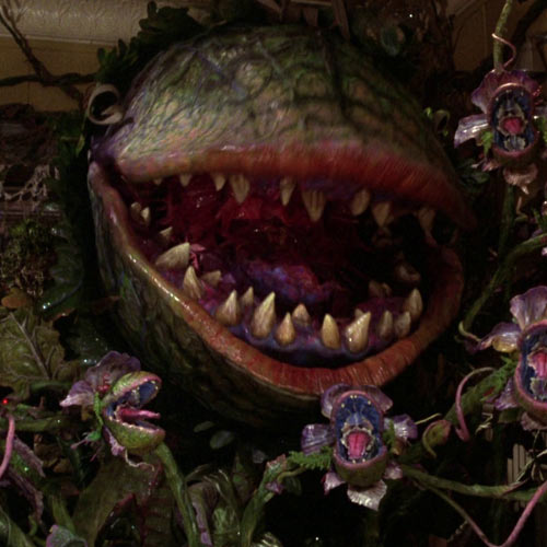 Movie Villains answer: AUDREY 2