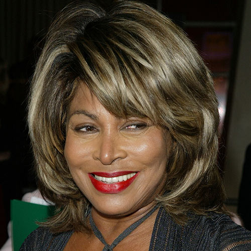 Music Stars answer: TINA TURNER