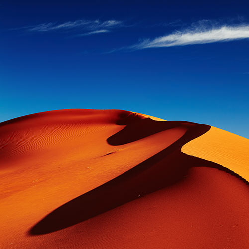 Nature answer: DUNE