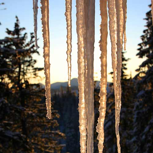 Nature answer: ICICLES