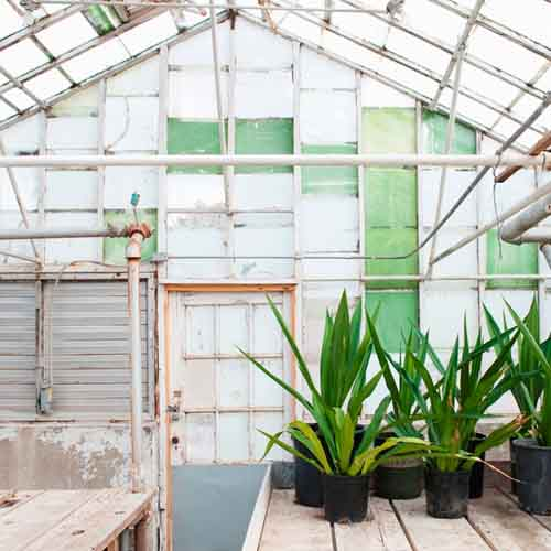 On The Farm answer: GREENHOUSE