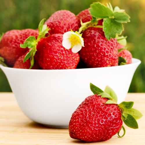 On The Farm answer: STRAWBERRIES