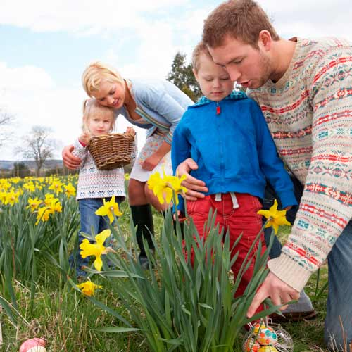 Parenting answer: EASTER EGG HUNT