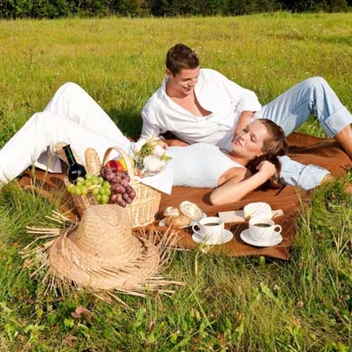 Party answer: PICNIC