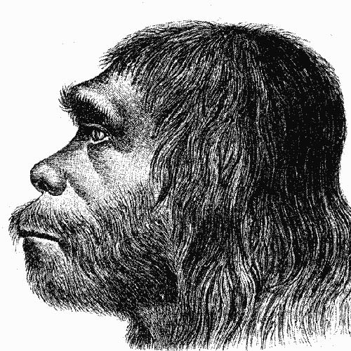 Science answer: NEANDERTHAL