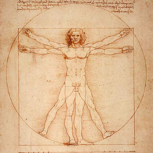 Science answer: VITRUVIAN MAN