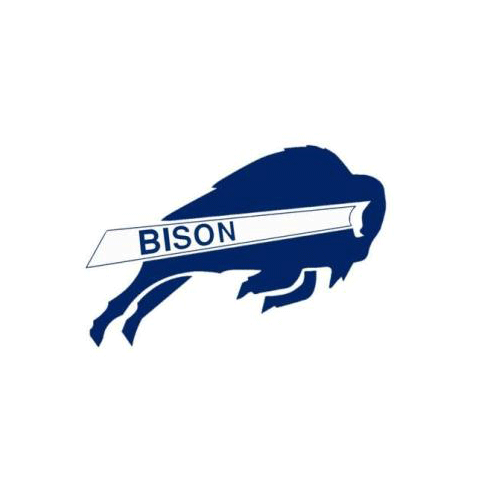 Sports Logos answer: BISON