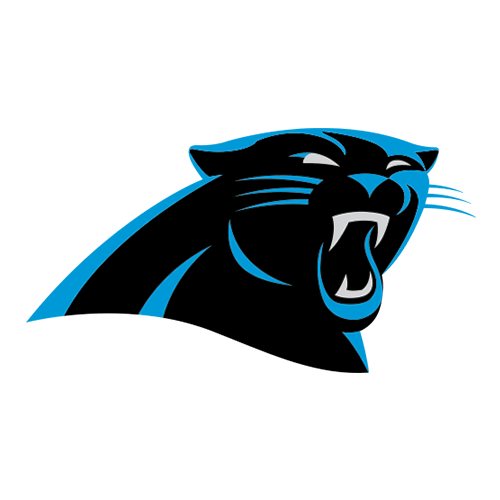 Sports Logos answer: PANTHERS