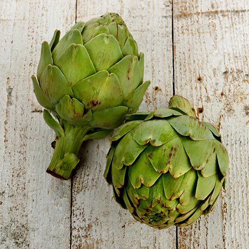 Spring answer: ARTICHOKE