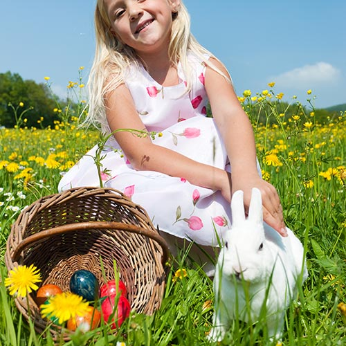 Spring answer: EASTER BUNNY