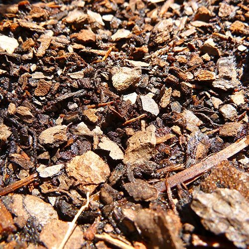 Spring answer: MULCH