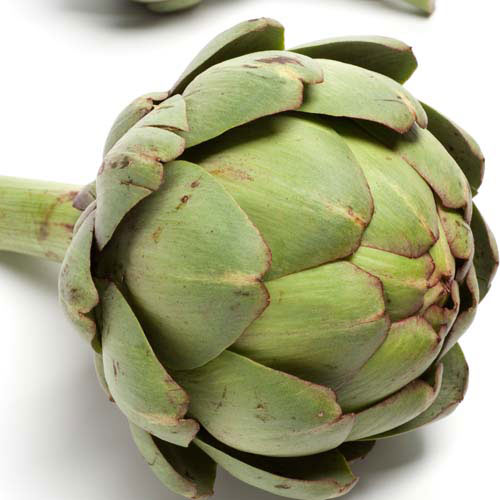 Taste Test answer: ARTICHOKE
