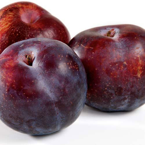 Taste Test answer: PLUMS