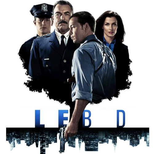 TV Shows 2 answer: BLUE BLOODS