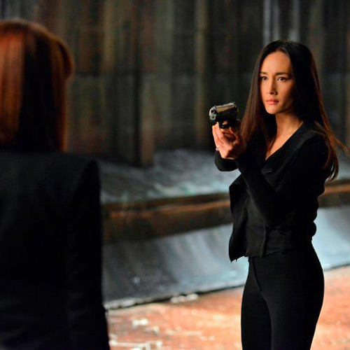TV Shows 2 answer: NIKITA