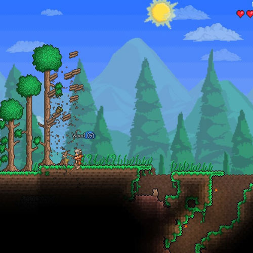 Video Games 2 answer: TERRARIA
