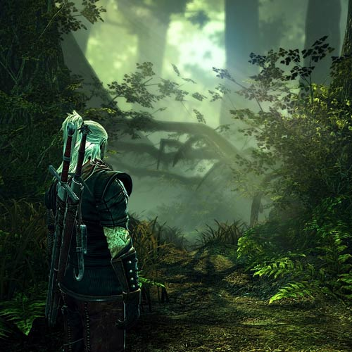 Video Games 2 answer: THE WITCHER