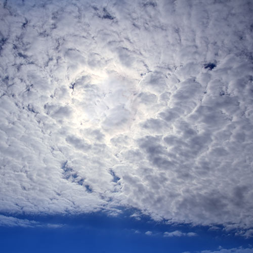 Weather answer: CIRROCUMULUS