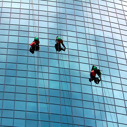 What Job? answer: WINDOW CLEANER